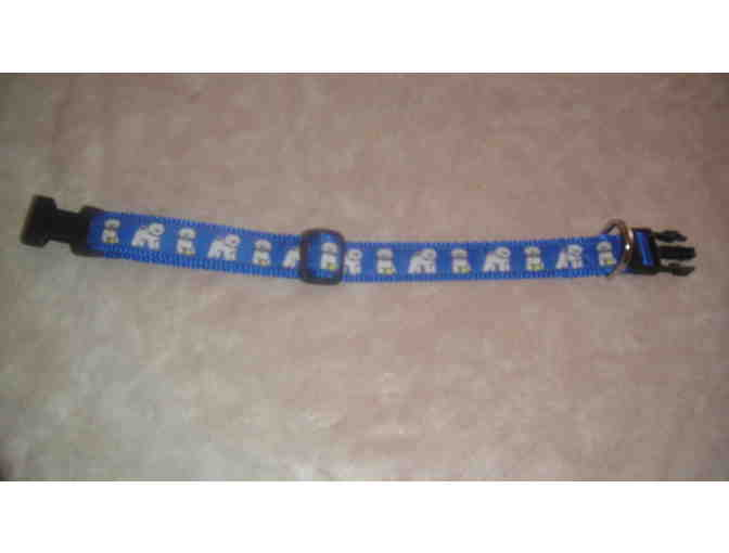 Blue Bichon Collar