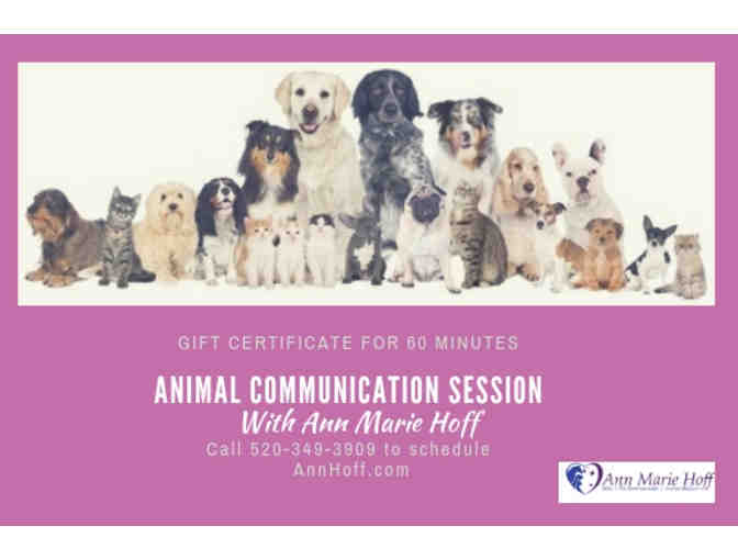 60 Minute Animal Communication Session with Ann Marie Hoff