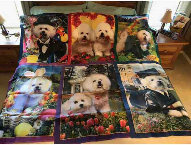 Bichon Garden Flags - Set of 12