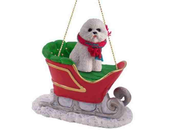 Bichon Frise in Sleigh Ornament