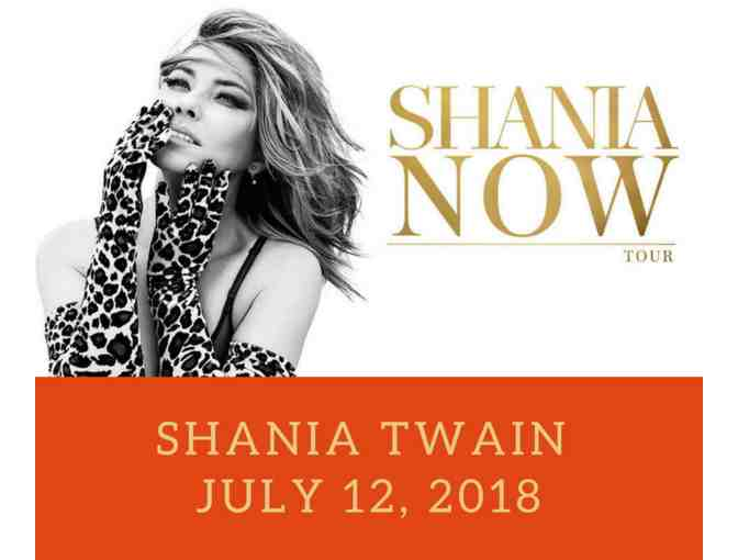 Shania Twain: NOW Tour