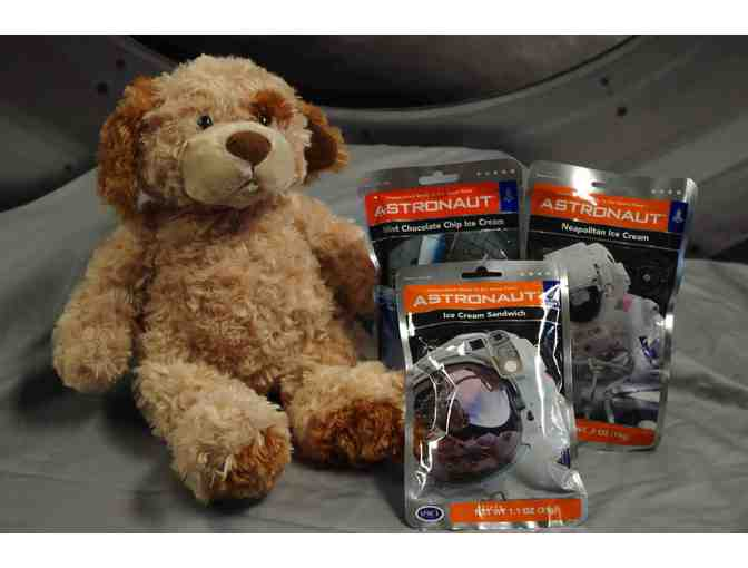 3 Pack Astronaut Ice Cream with Tempur-Pedic Puppy