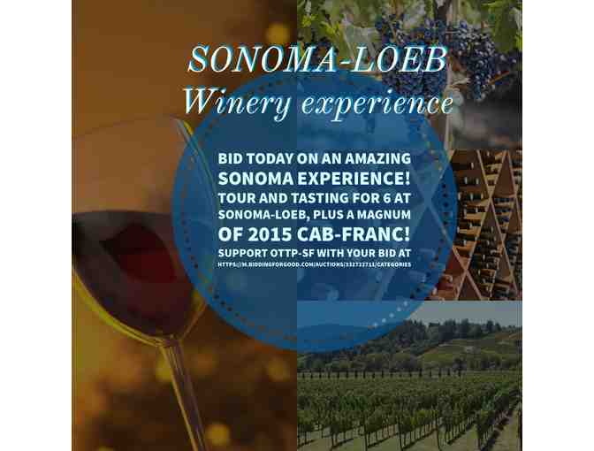 Sonoma-Loeb Wine Tasting, Tour, and magnum of Cab Franc 2015 for 6