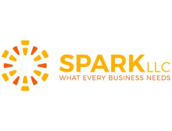 Human Resource Assessment from Spark LLC