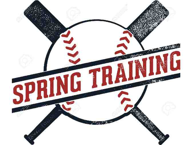 Minnesota Twins & Boston Red Sox 2020 Spring Training Tickets