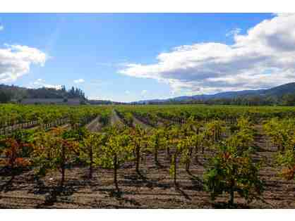 California Duet and Wine Tour, San Francisco and Sonoma