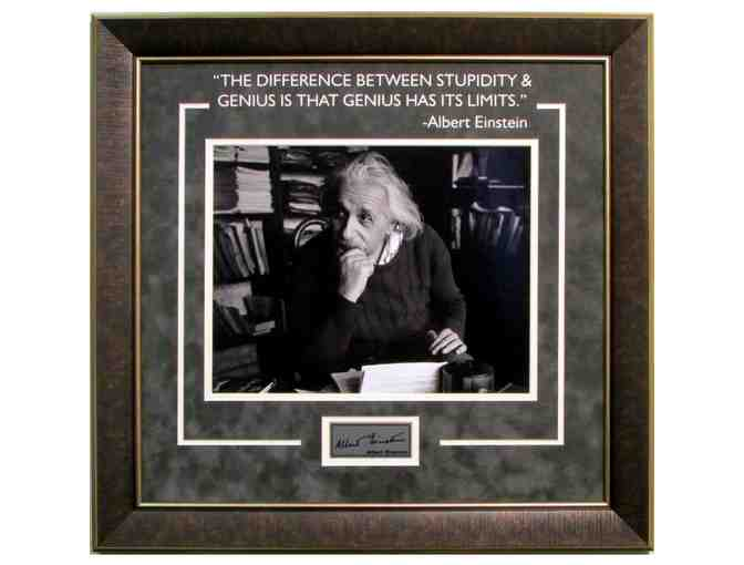 Albert Einstein 'The Difference Between Genius and Stupidity is...' Photograph