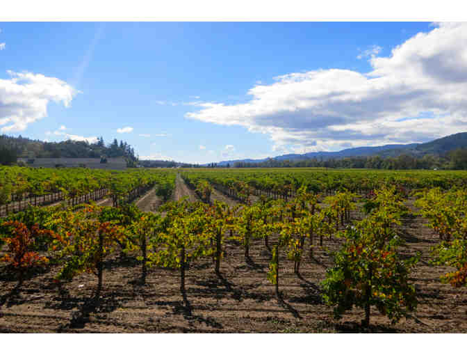 California Duet and Wine Tour, San Francisco and Sonoma - Photo 1