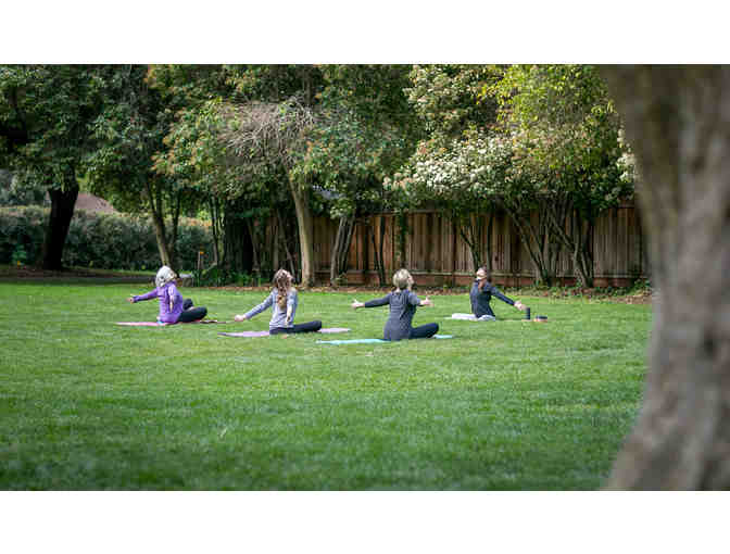Corporate Yoga 3-Class Pack with Lauren Olesh Yoga - Photo 2