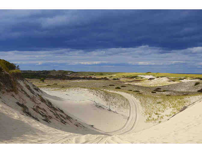 Art's Dune Tours - Photo 1