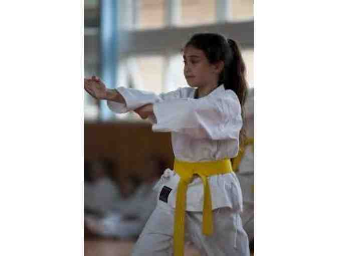 Karate Lessons- 1 month free