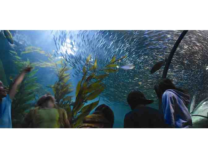 Four tickets to Aquarium of the Bay