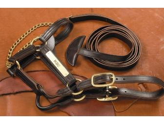 Leather Stallion Halter & Lead Shank with Custom Engraved Brass Nameplates - Photo 1