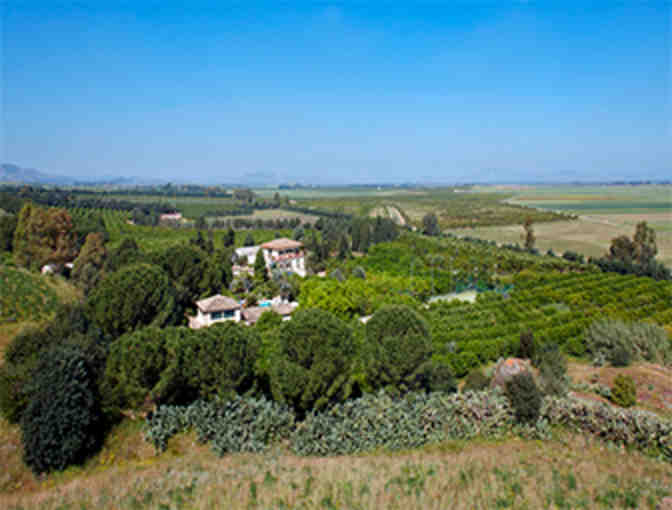 IL GIARDINO: An Unforgettable Week for Four, in a Magnificent Sicilian Villa, with Airfare