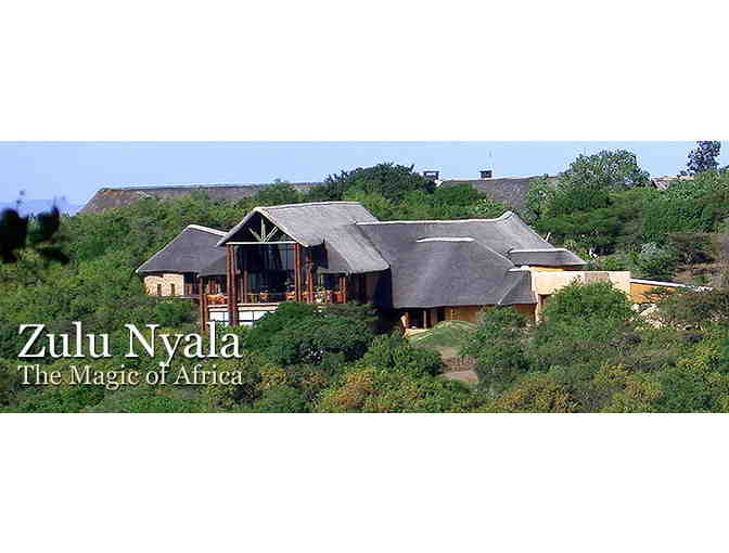 The African Dream: Zulu Nyala South African Photo Safari