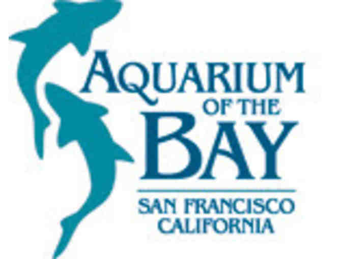 Aquarium of the Bay, San Francisco - Passes for Two