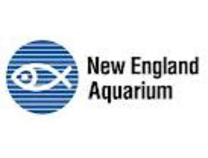 Two (2) Passes for Admission to the New England Aquarium - Photo 1