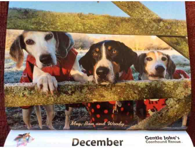 2021 Coonhound Wall Calendar - Photo 1