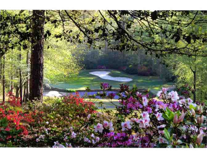 Enjoy Golf for 4 @ Carolina Trace Country Club Sanford, NC + $100 Food Credit