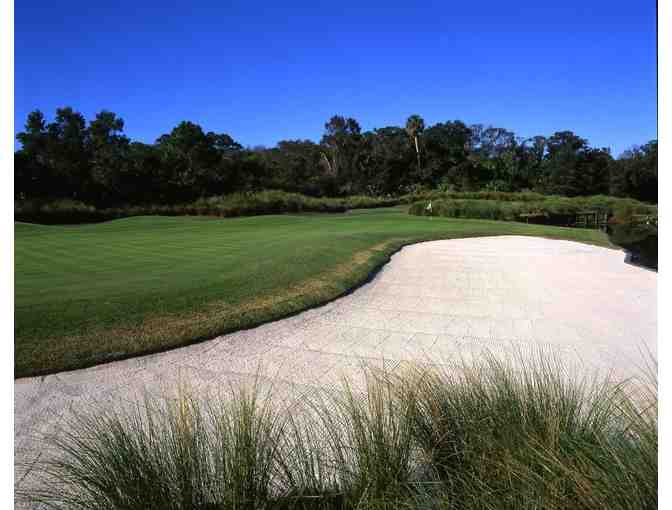 Enjoy Golf for 4 @ Palmetto Dunes Resort - Arthur Hills Course Hilton Head,SC + $100 FOOD