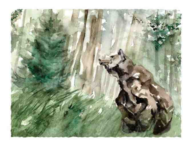 Grizzly Wonder -- Limited Edition Print