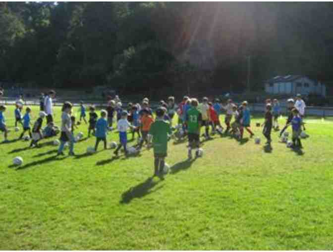 1 Week Summer Soccer Camp (half-day) with Santa Cruz Soccer Camp (2019) - Photo 1