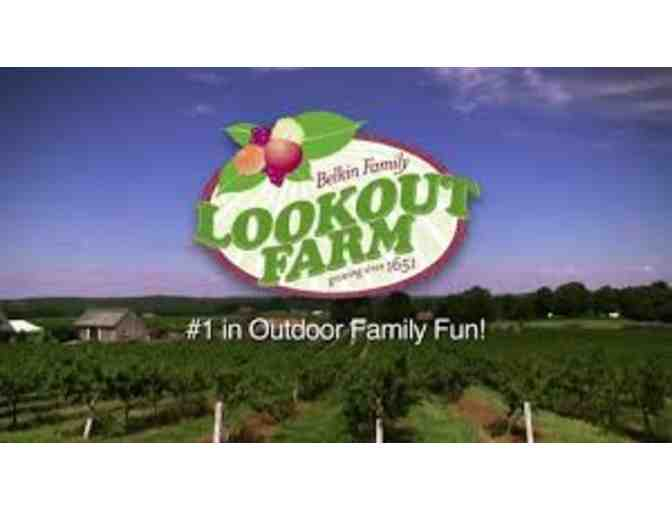 4 Day Passes to Belkin Family Lookout Farm