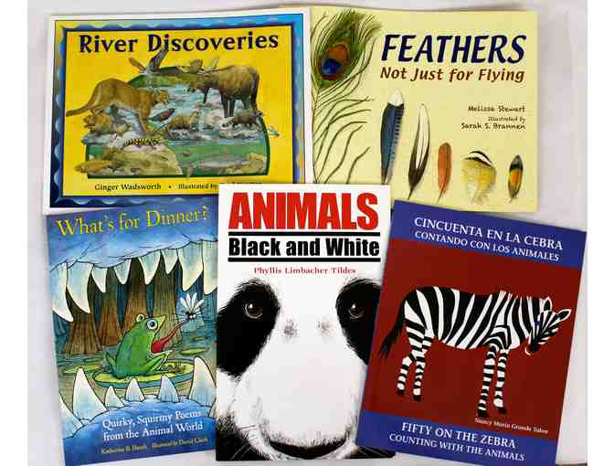Animal Book Bundle