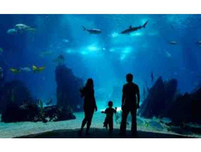Two Tickets to The Aquarium of the Pacific