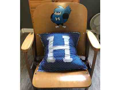 Bluebird Chair from Highland's PAC (Before remodel) and Pillow