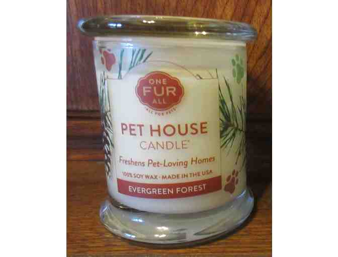 One Fur All Pets Candle - Evergreen Forest