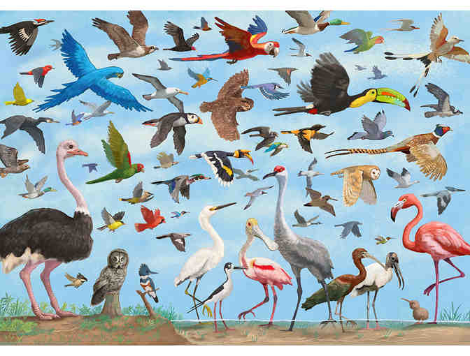 All the Birds framed print by David Opie - Photo 1