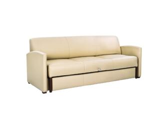 New Family Sofa Bed