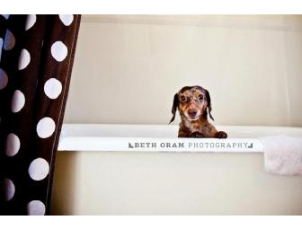 Beth Oram Photography Gift Certificate Pet Photography (New England Only)