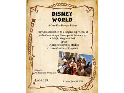 Disney World One-Day Park Hopper Passes
