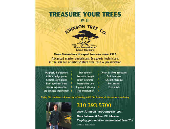 $350 Gift Certificate for Tree Care and Hedge Service
