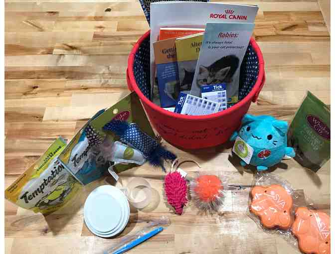 Cat Care & Treats Basket