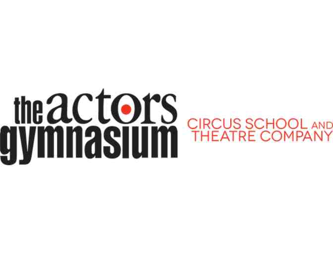 Circus School and Theatre