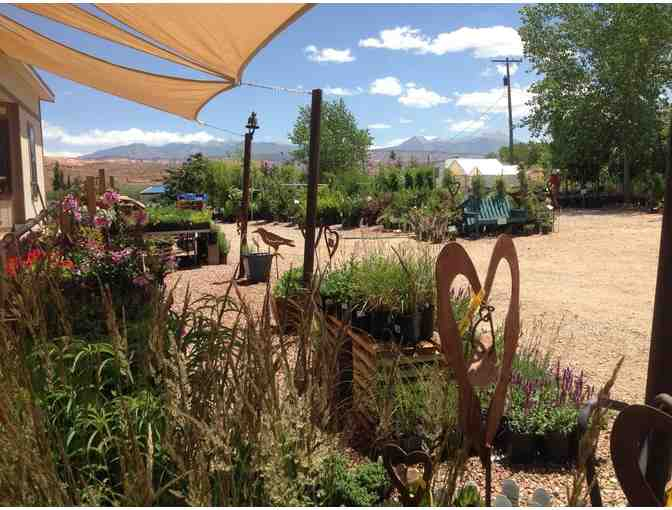 $25 Gift Certificate to Wildland Scapes Nursery - Photo 1