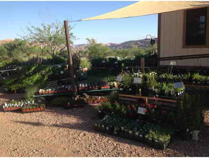 $25 Gift Certificate to Wildland Scapes Nursery - Photo 2