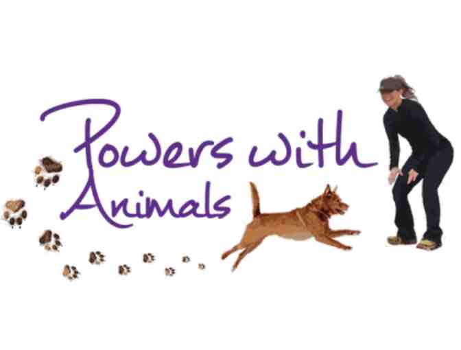 Powers with Animals-One Hour Animal Behavior Therapy Session