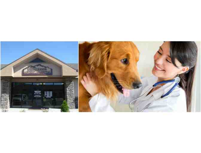 Mill Creek Animal Hospital - $50 Gift Certificate for Pet Health Services
