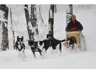 Dog Sledding Adventure for Four-Montgomery Center, VT